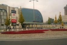 Zieleń przed Poznań City Center - rok po założeniu