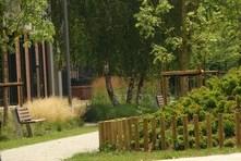 Park w Starym Korycie Warty